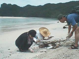 マレーシアの海岸