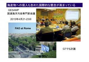 図15 GESAMPRome 国連海洋汚染専門家会議