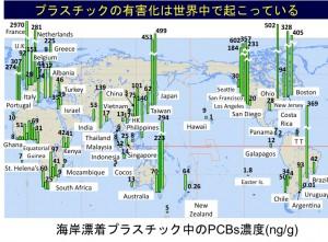 図10 Pellet中のPCBs濃度