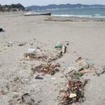 プラスチックゴミが漂着している浜辺の様子