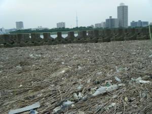 東京の荒川河口のプラゴミ集積地