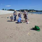 菖蒲田浜でのマイクロプラスチック採取